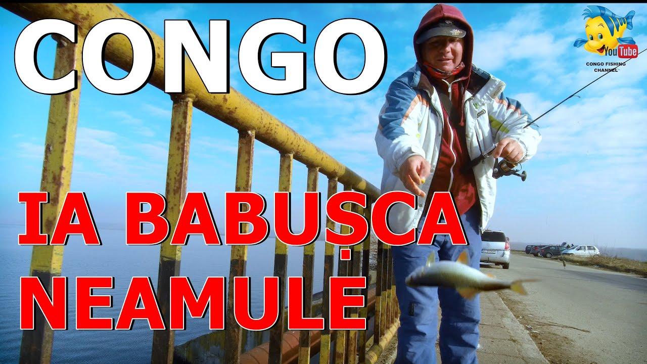 BABUSCA PE MINUT LA MINUS 5 GRADE CU MAMALIGA -CONGO-CEL MAI BUN PESCAR DIN ROMANIA SI DIASPORA