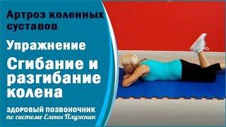Артроз коленных суставов Упражнение 1 Сгибание и разгибание колена Елена Плужник Здоровые колени