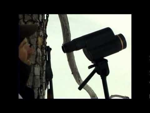Alaska Brown Bear Hunt With Ultimate Alaskan Adventures Hunting Guide Service Part 1 Of 3