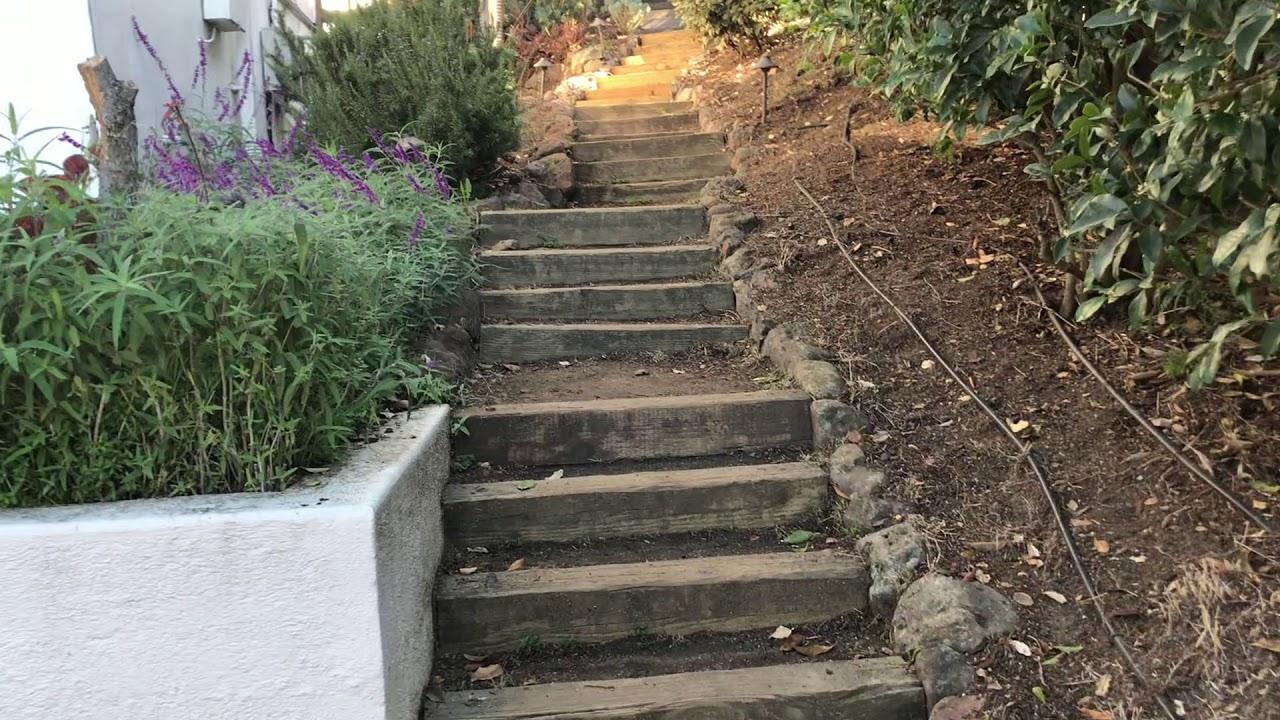 Lovely Berkeley Walks!