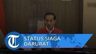 Pantau Karhutla, Presiden Jokowi Nyatakan Status Kebakaran Hutan di Riau Siaga Darurat