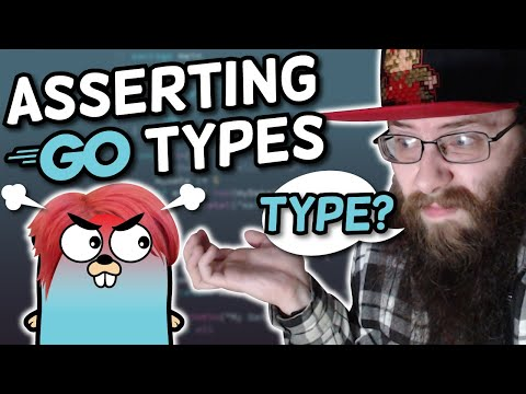 DID YOU JUST ASSERT MY TYPE?! - Golang Type Assertion Tutorial
