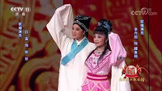 [梨园闯关我挂帅]越剧《追鱼》选段 演唱:李丹阳 白雪| CCTV戏曲