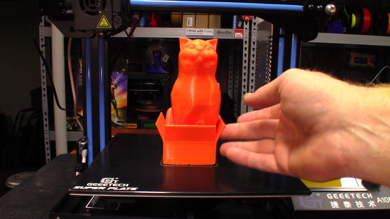 3D Printed Cat Sitting In A Box On The Geeetech A10