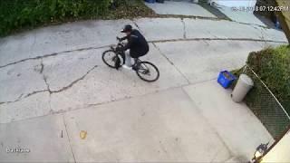 Giant Tough Road GX1 stolen from backyard in Winnipeg