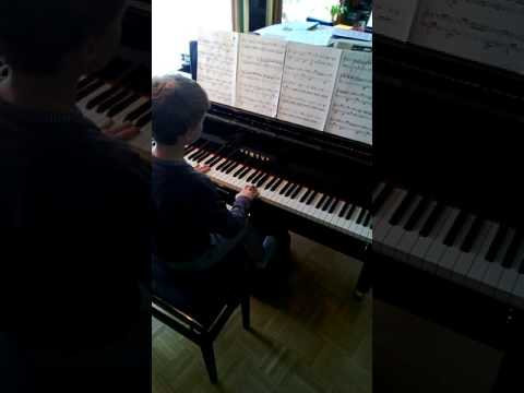 Fur Elise, Bagatelle No. 25 in A minor, Beethoven, Ludvig van