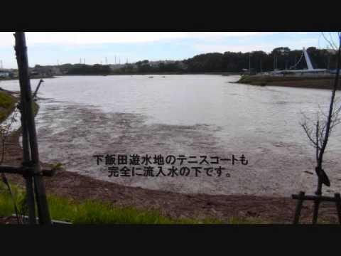 遊水 公園 境川 地
