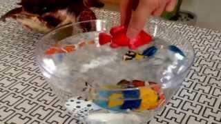 Robo fish swimming 2.ロボフィッシュ!