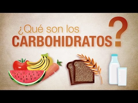 Qu son los carbohidratos youtube for Cuales son los arboles perennes