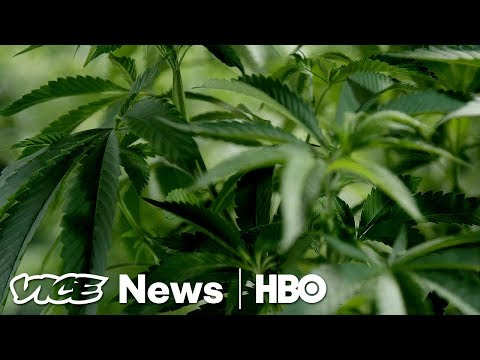 Weed for PTSD & John Lennon's Deportation: VICE News Tonight Full Episode (HBO)