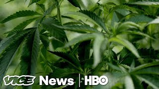 Weed for PTSD & John Lennon's Deportation  VICE News Tonight Full Episode (HBO)