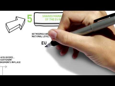 EU Auditors review EU accountability landscape