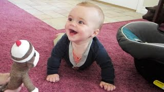 BABY LAUGHS HYSTERICALLY AT SOCK MONKEY!!