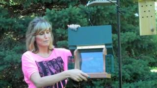 Woodlink Going Green Hopper Feeder - For The Wild Birds