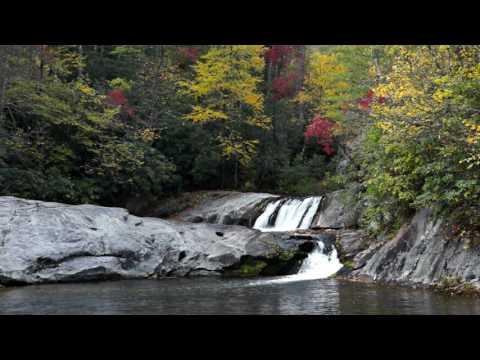 Hunt Fish Falls - Pisgah National Forest