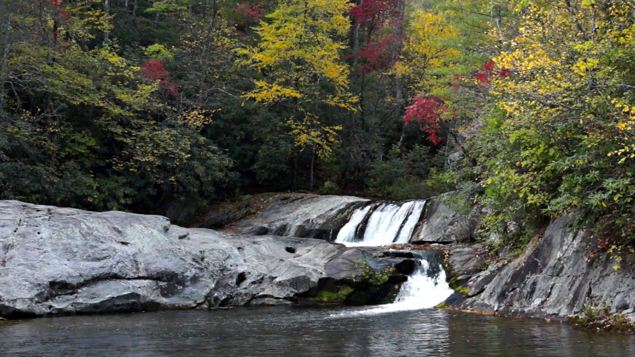 Hunt fish falls pisgah national forest youtube for Nc hunt and fish