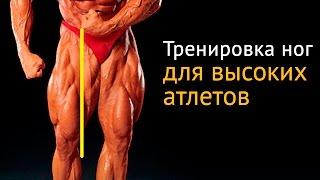Как накачать ноги высоким атлетам