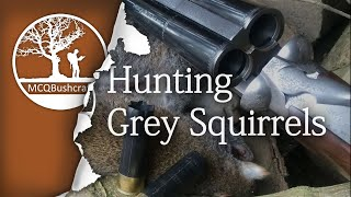 Hunting: Grey Squirrels with a Shotgun