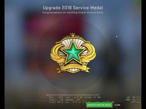 What Is It Like To Upgrade Service Medal In Panorama?