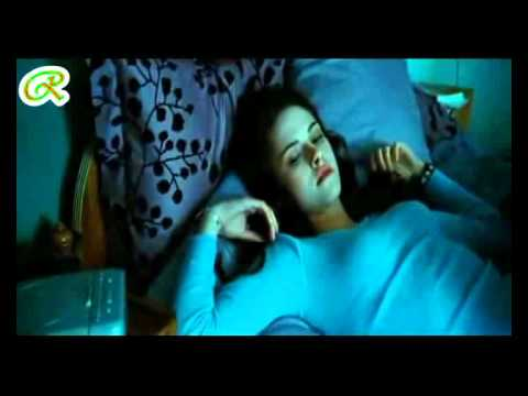 Fadel Shaker - Ana Bahebak ( English Subtitle )