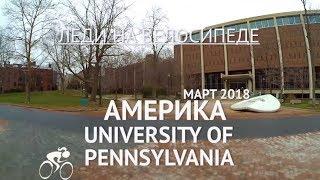 ОБУЧЕНИЕ В США Университет в Пенсильвании. Жизнь в Пенсильвании