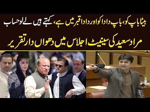 Murad Saeed Aggressive speech in Senate session today