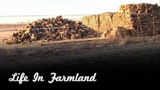 How I Stack My Firewood And Why I Do It This Way