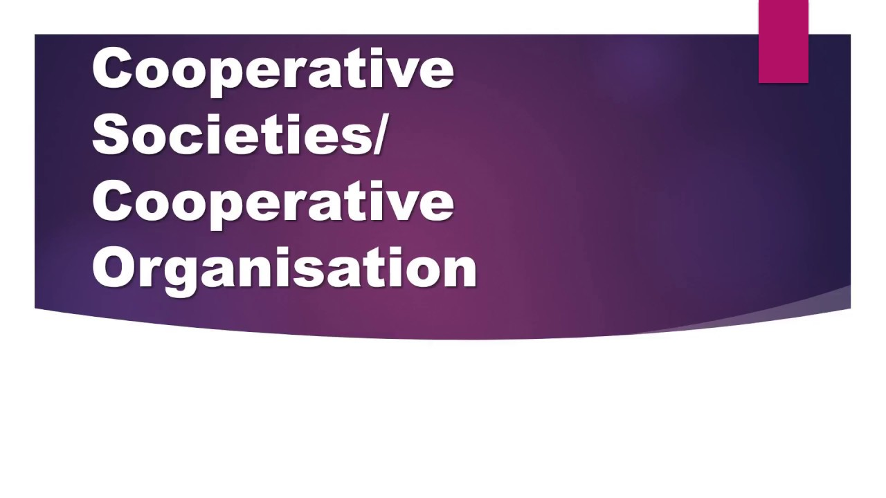 features of cooperative organisation