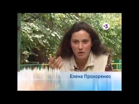 Радиойодтерапия - «Радиойодтерапия отзыв. 10-летняя