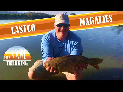 Camping And Fishing With The Kids At Eastco Magaliesburg 2019