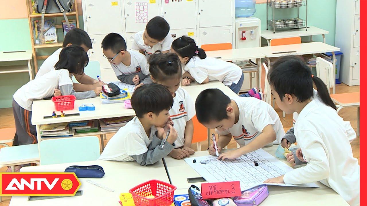 Thiết kế hoạt động trải nghiệm tiểu học trong chương trình giáo dục phổ thông mới | An toàn sống
