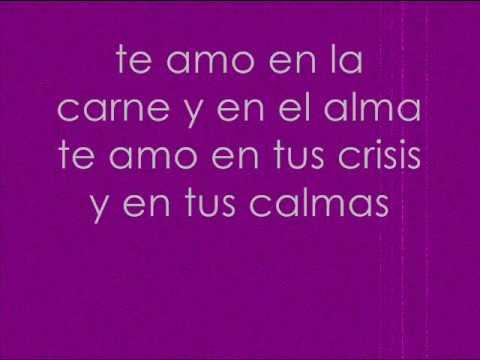 Amo - Axel Fernandez (Lyrics)