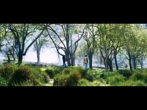 Kankankalil song from madhuranaranga movie whatsapp status video