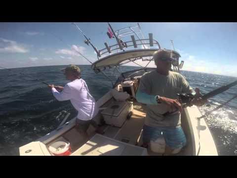 Virginia Beach Inshore Fishing Offshore Fish 2015