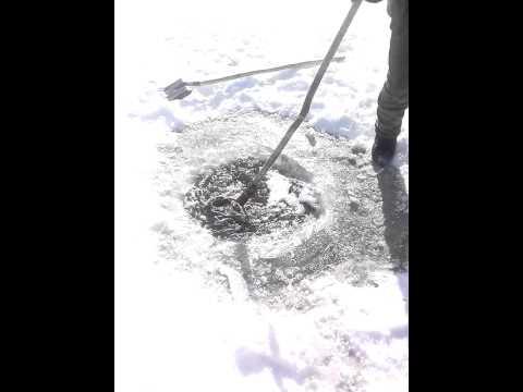ловля ротана зимой в амурской области