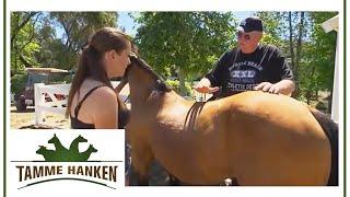 Tamme Hanken | Pferd falsch geritten | kabel eins