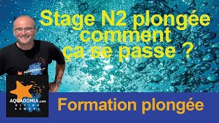 Stage plongée niveau 2 pour passer son N2 plongée... Comment ça se passe ?