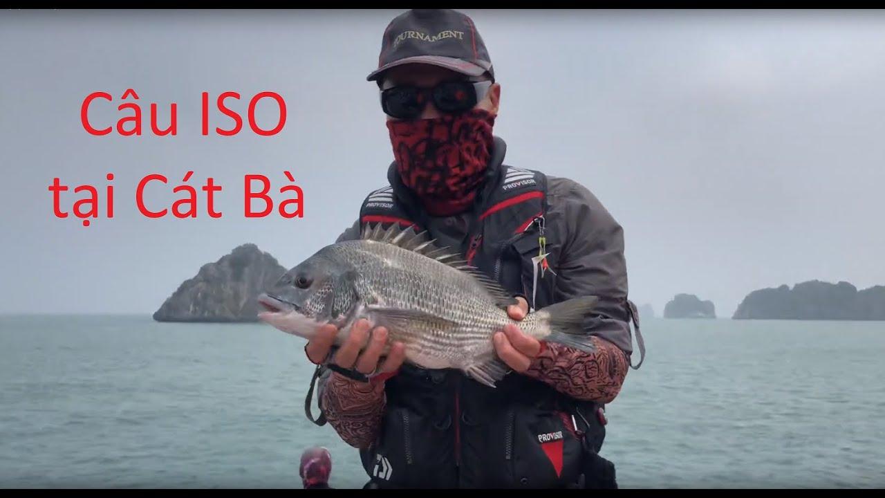 Câu ISO tại Cát Bà – Hải Phòng   Cần Thủ Đài Loan