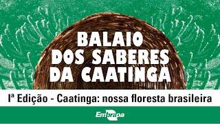 Balaio de Saberes da Caatinga: 1ª edição – Caatinga: nossa floresta brasileira