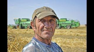 видео Как оплачиваются переработки по Трудовому кодексу? Оплата сверхурочной работы: ТК РФ