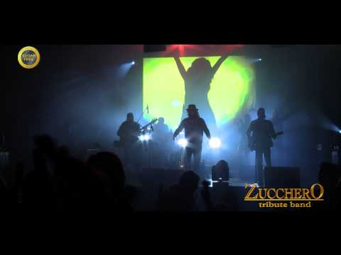 SUGAR FREE - ZUCCHERO TRIBUTE BAND promo