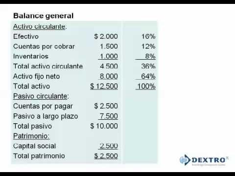 Ejemplo De Balance General De Una Empresa Mexicana