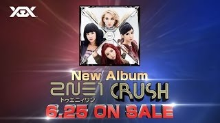 2NE1 - Japan New Album