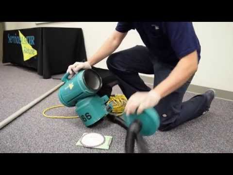 Janitorial Tasks For Employees