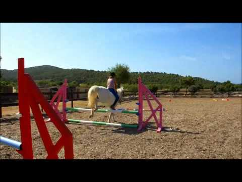 oscar jumping (( lady gaga-bad romance)