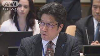 米朝首脳会談を前に拉致被害者の家族がニューヨークの国連本部での会合...