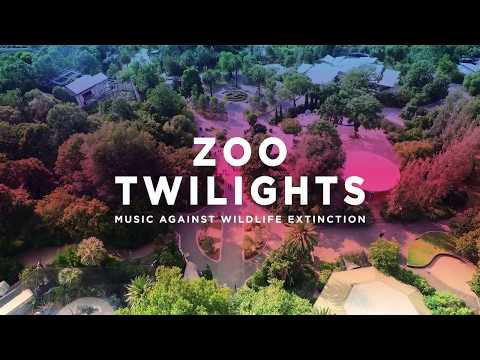 Zoo Twilights 2018 Mp3