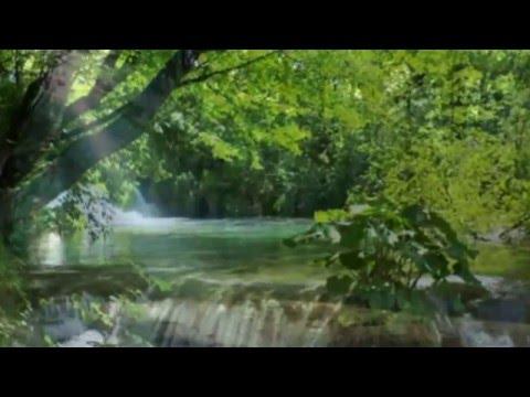Потрясающе Романтичная Музыка Очень Красивое Видео Hd720
