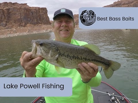 Lake Powell Fishing Report - Best Baits Largemouth & Smallmouth Bass