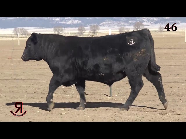 Reverse Rocking R Ranch Lot 46